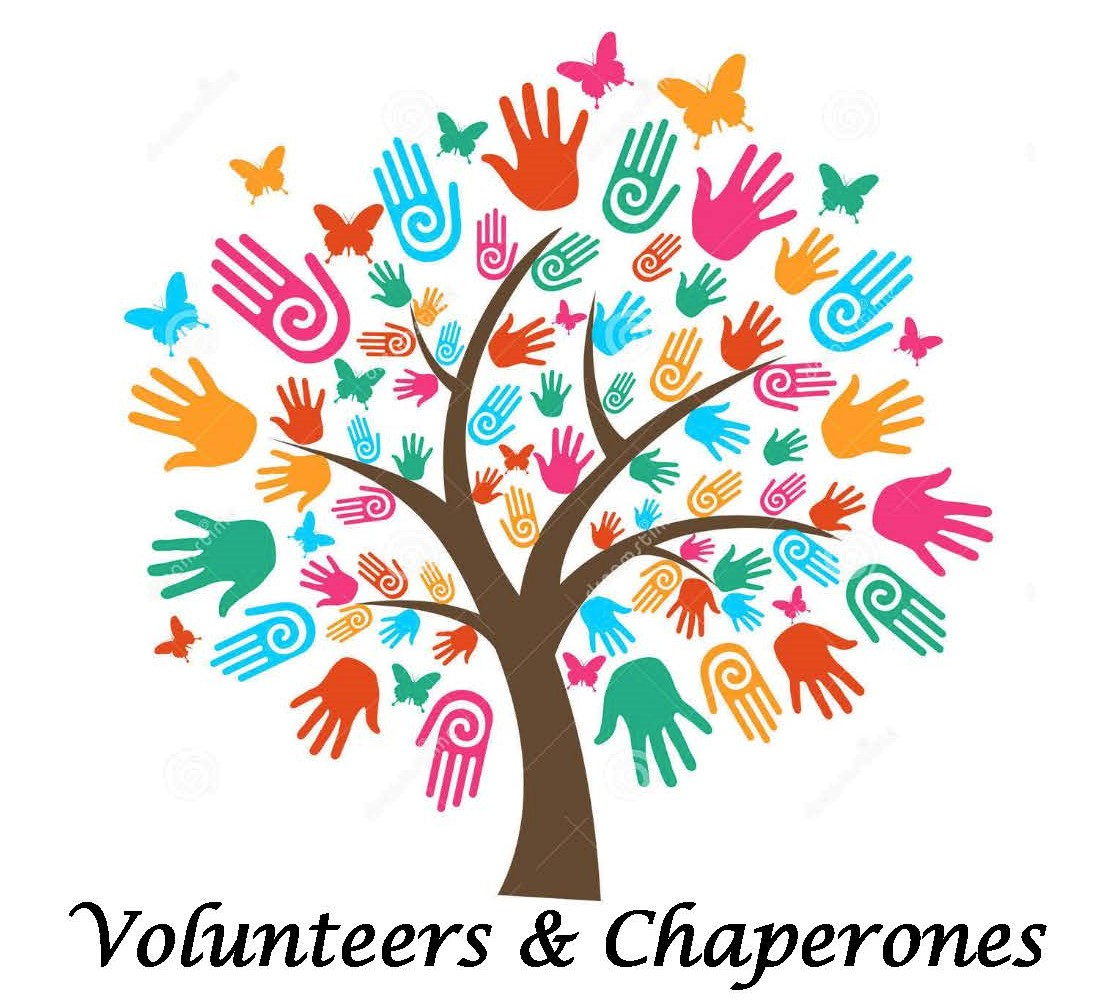 volunteers and chaperones image